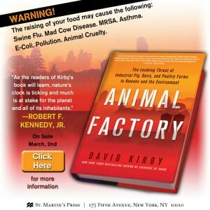 David Kirby's new book, Animal Factory: The Looming Threat of Industrial Pig, Dairy, and Poultry Farms to Humans and the Environment, released March 2