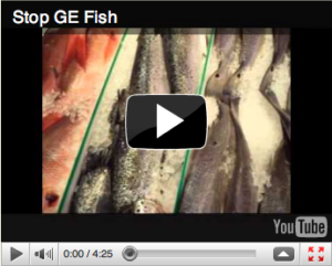 What Does the FDA Have to Hide from the Public About GE Salmon?