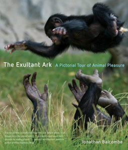 The Exultant Ark book cover