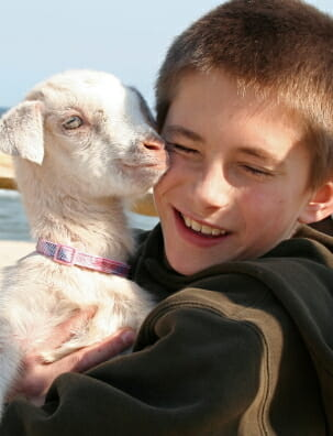 boy hugging baby goat