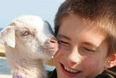 boy hugging baby goat cropped