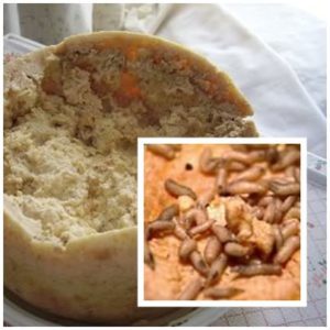 Cheese Ripened and Flavored by Vermin Can Make Your Skin Crawl
