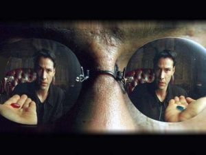 The Matrix as Metaphor for Animal Advocacy