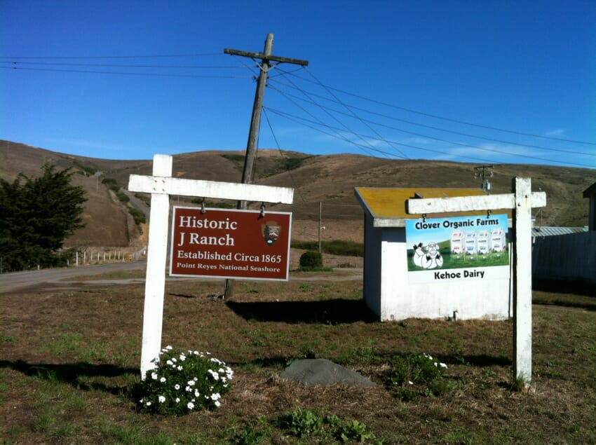 This signage is the first thing you'll see if you travel beyond the supermarket shelf and into the country. The brown sign indicates historic farm designation granted by the U.S. Department of the Interior. Clover Organic Dairy is a leading dairy in this region. Note the cartoonish logo of the happy dairy cow.