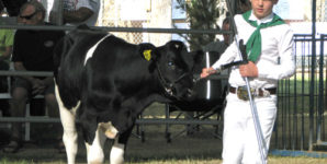 Elizabeth Reflects on Her 4-H Experience and Her Path to Becoming Vegan