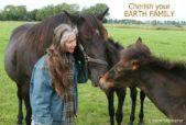 horses christopher