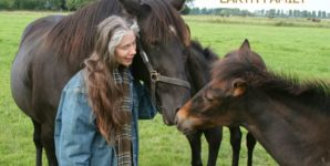 Horse Slaughter and the Big Picture