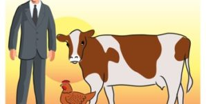 Four Reasons Why We Should Not Model Our Food Choices on What Other Animals Eat