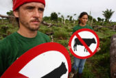 Activists with Forbidden Cattle Signs