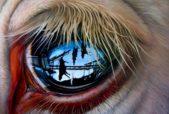 """NEXT"" 60″x48″ OIL ON CANVAS by Jackson Thilenius"