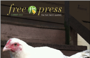 Introducing the First Edition of Free Press, FFH's New Quarterly Newsletter!