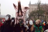 pig effigy at Prague parade