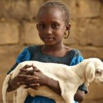 10 Reasons To Say NO To Animal Gifting Hunger Relief Organizations