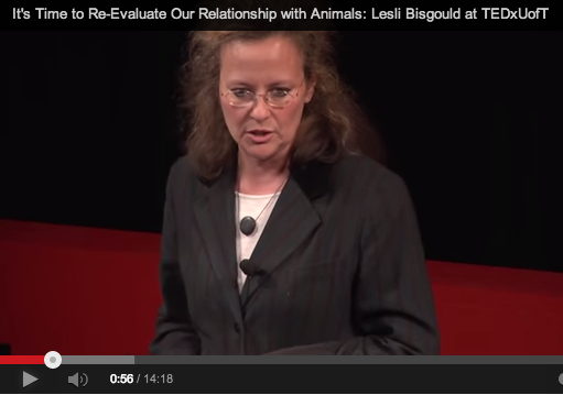 animal law, lesli bisgould