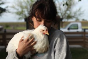 Backyard Chickens: Expanding Our Understanding of 'Harm'