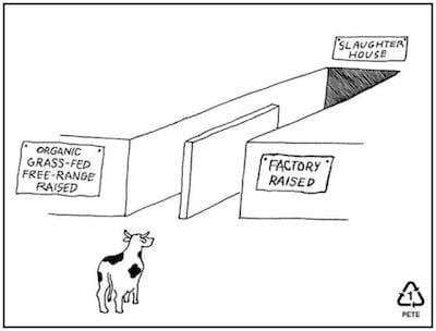 humane meat