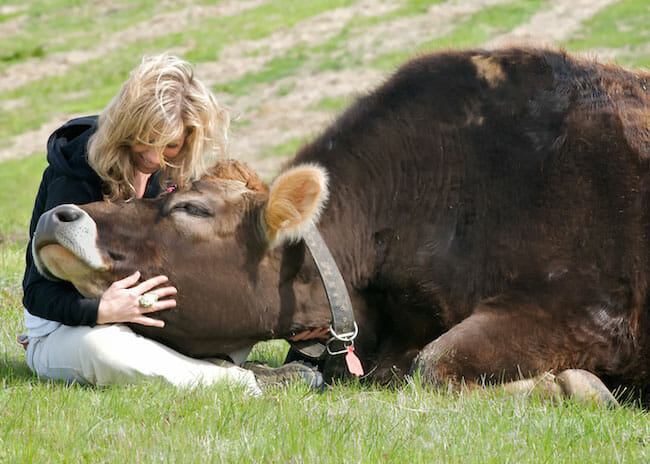Colleen Patrick-Goudreau with Linus the steer at Farm Sanctuary.