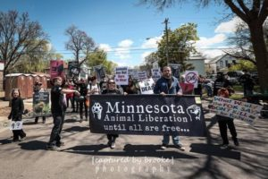 Minnesota Animal Liberation marching in the 2016 May Day Parade with an anti-fur theme