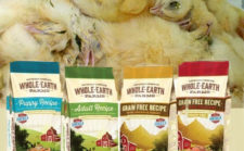 The Dark and Deceptive Side of the Pet Food Industry