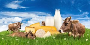 humane dairy