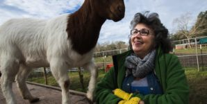 Renée King-Sonnen, former beef farmer