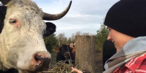 My Journey from 'Humane' Dairy Farmer to Vegan Cheese Maker