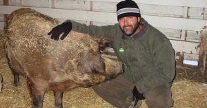animal farmer turned vegan