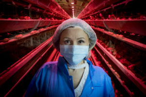Woman with mouth cover on standing in an egg factory farm