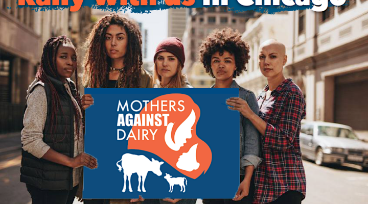 "mothers holding ""mothers against dairy"" sign"