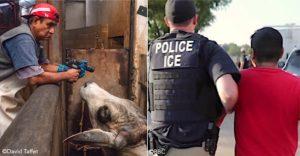 ICE raid Mississippi