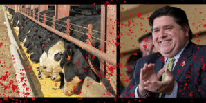 Hold Illinois Governor Pritzker Accountable for his Huge New Investment in Animal Ag.